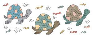 Turtles_810